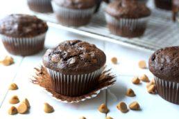 Crazy Good Chocolate Muffin Mix-0